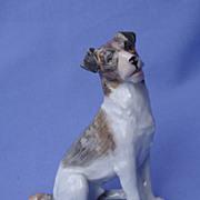 """Wire Fox Terrier Dresden Germany 6"""""""