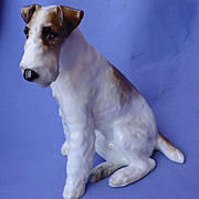 "9"" wire haired Fox terrier Paragon England dog"