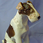 """1950s Wire haired Fox terrier Jack Russell dog Schierholz  Germany 9"""""""