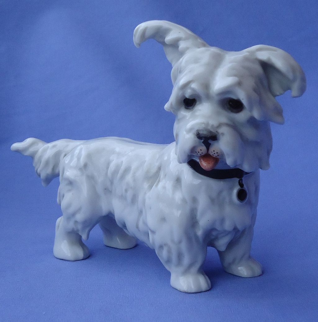 """1950s Skye Silky terrier Briard Wessel Germany 6"""""""