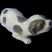 "grey pointer puppy Royal Copenhagen Denmark 7"""