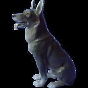 """1950s German Shepherd Alsatian dog Bing & Grondahl 10"""""""