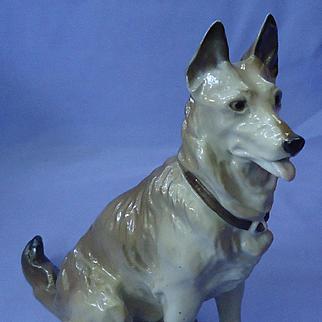 """1930s German Shepherd Alsatian dog Schierholz Germany 8"""""""