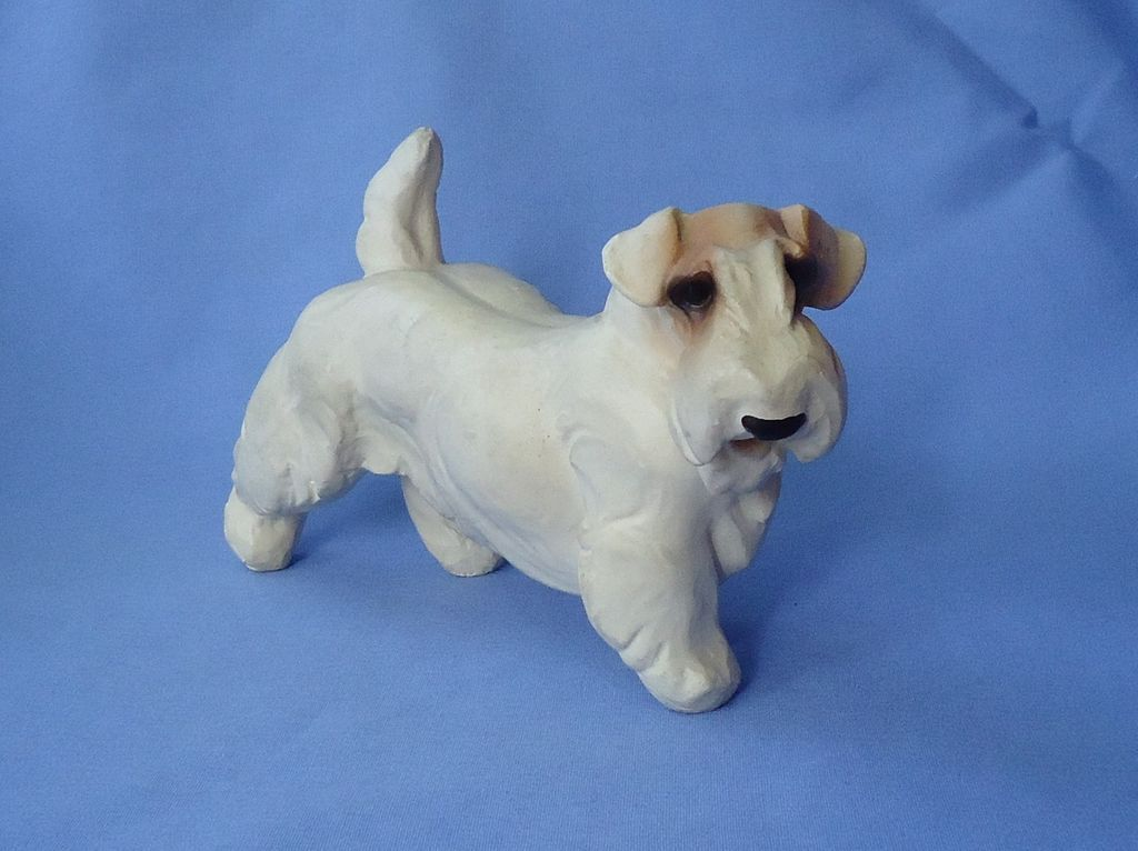 1940 Sealyham  Cesky Terrier Jan Allan 7""
