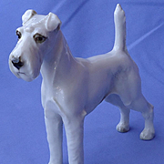 1950s Airedale Irish Welsh Fox Terrier Hutschenreuther dog Germany 6""