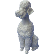 """1950s white Poodle dog Hutschenreuther Germany 7"""""""