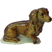 """long haired Dachshund Germany 5"""""""