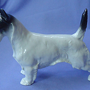 "MO Scottish terrier Germany 8"""