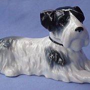 Sealyham Cesky terrier Metzler Ortloff Germany 7""