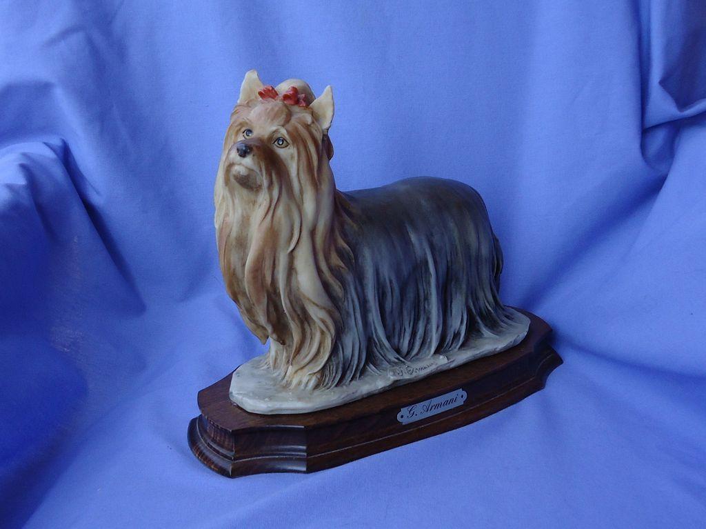 "1983 Armani  Yorkshire Silky terrier 10"""