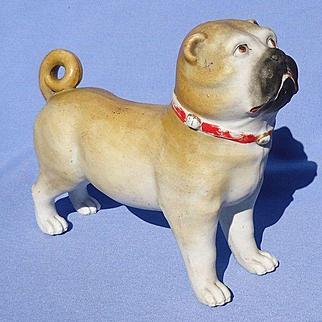 "antique bisque Pug Germany 8"""