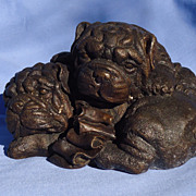 bronze Pug puppies 8""