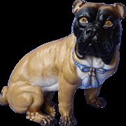 "antique Victorian Pug Mastiff dog 10"" Germany"