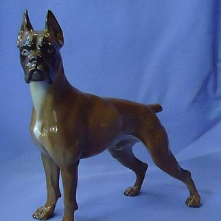 "1970 Rosenthal Boxer dog Germany 9"""