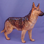 Royal Doulton German Shepherd Belgian Malinois 8""