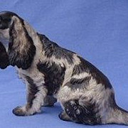 1930 Rosenthal Germany English setter Field Springer spaniel 9""