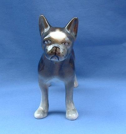 1950s Boston Terrier Jiggs Robert Simmons