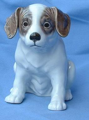 """Setter Pointer puppy Denmark sample 8"""""""