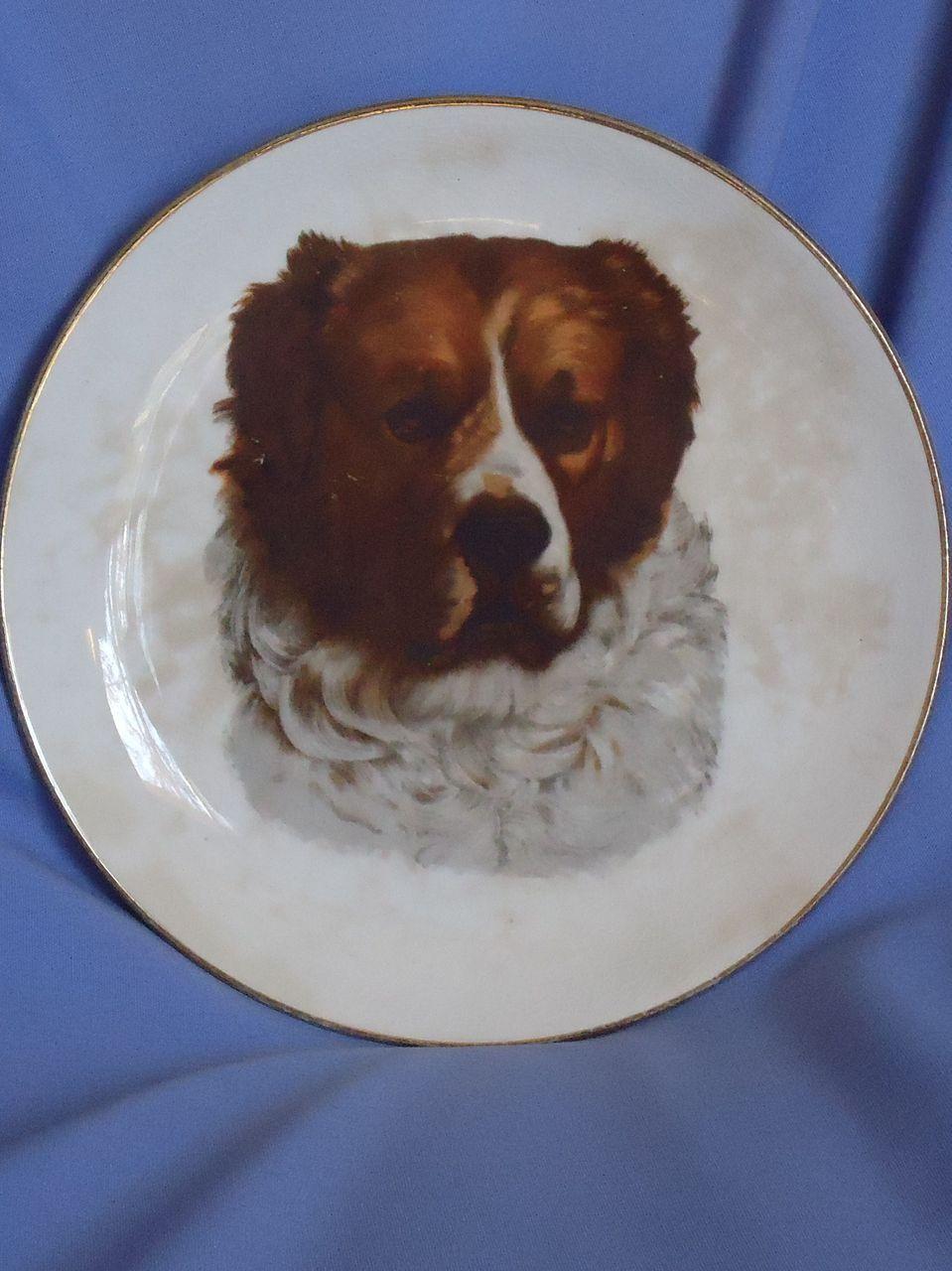 old Dresden plate Saint Bernard