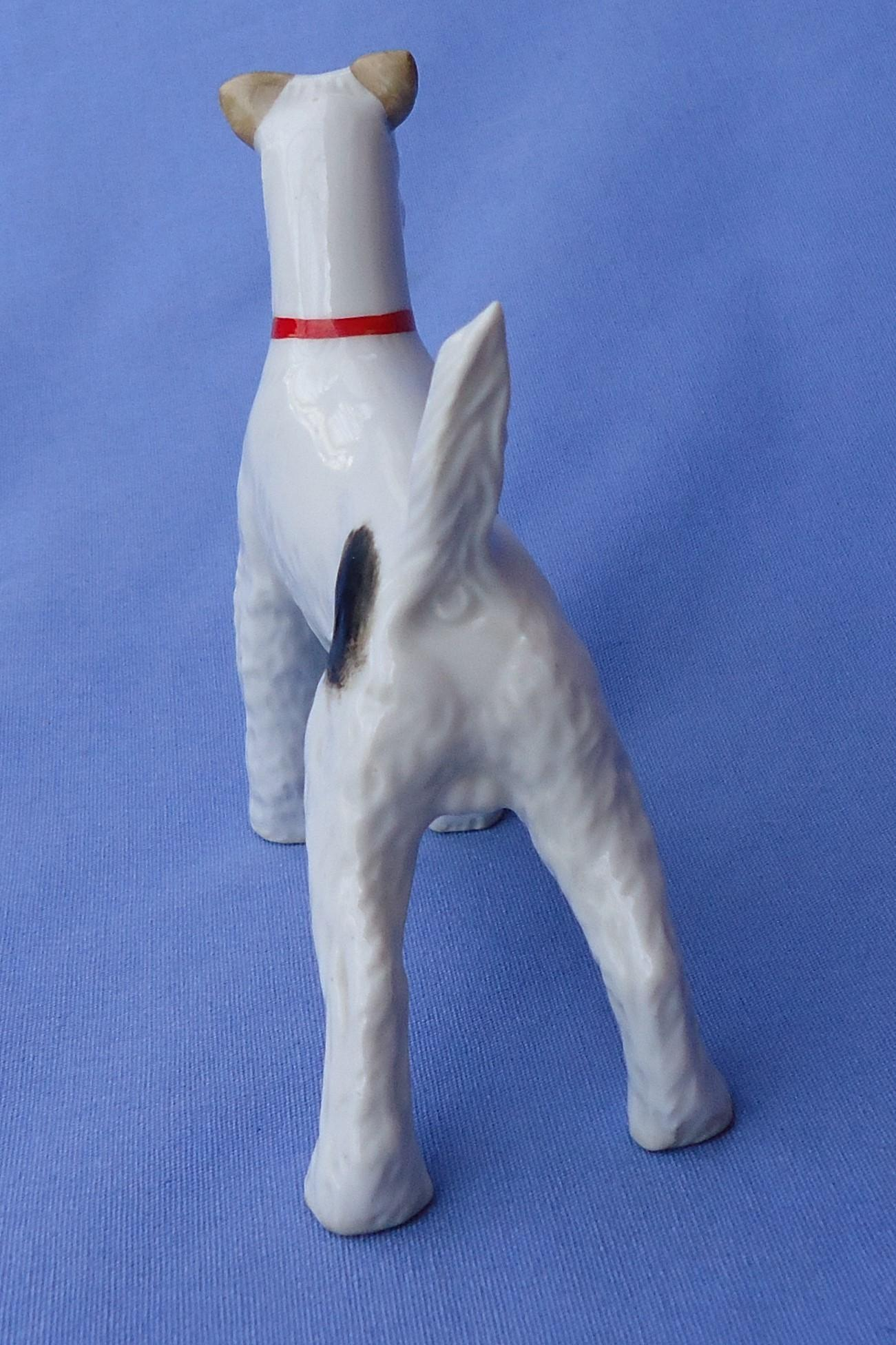 Fox Terrier dog Schlaggenwald Czechoslovakia 5""