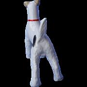 "Fox Terrier dog Schlaggenwald Czechoslovakia 5"""