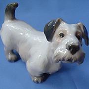 "vintage Sealyham Cesky terrier Dahl Jensen Denmark 8"""