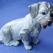 "vintage Dresden Germany Sealyham Cesky terrier 5"""