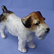 "Sealyham Cesky terrier Ens Germany 5"" dog"
