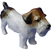 "Sealyham Cesky terrier Ens Germany 5"" dog"