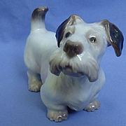 """Sealyham Cesky terrier Dahl Jensen Denmark dog 7"""""""