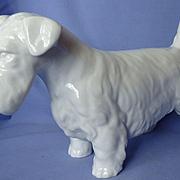 "13"" Sealyham Cesky terrier Rosenthal Germany"