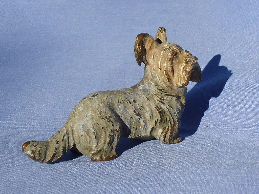 Skye silky terrier bronze Austria