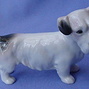 1930 Sealyham Cesky terrier dog AVP Germany