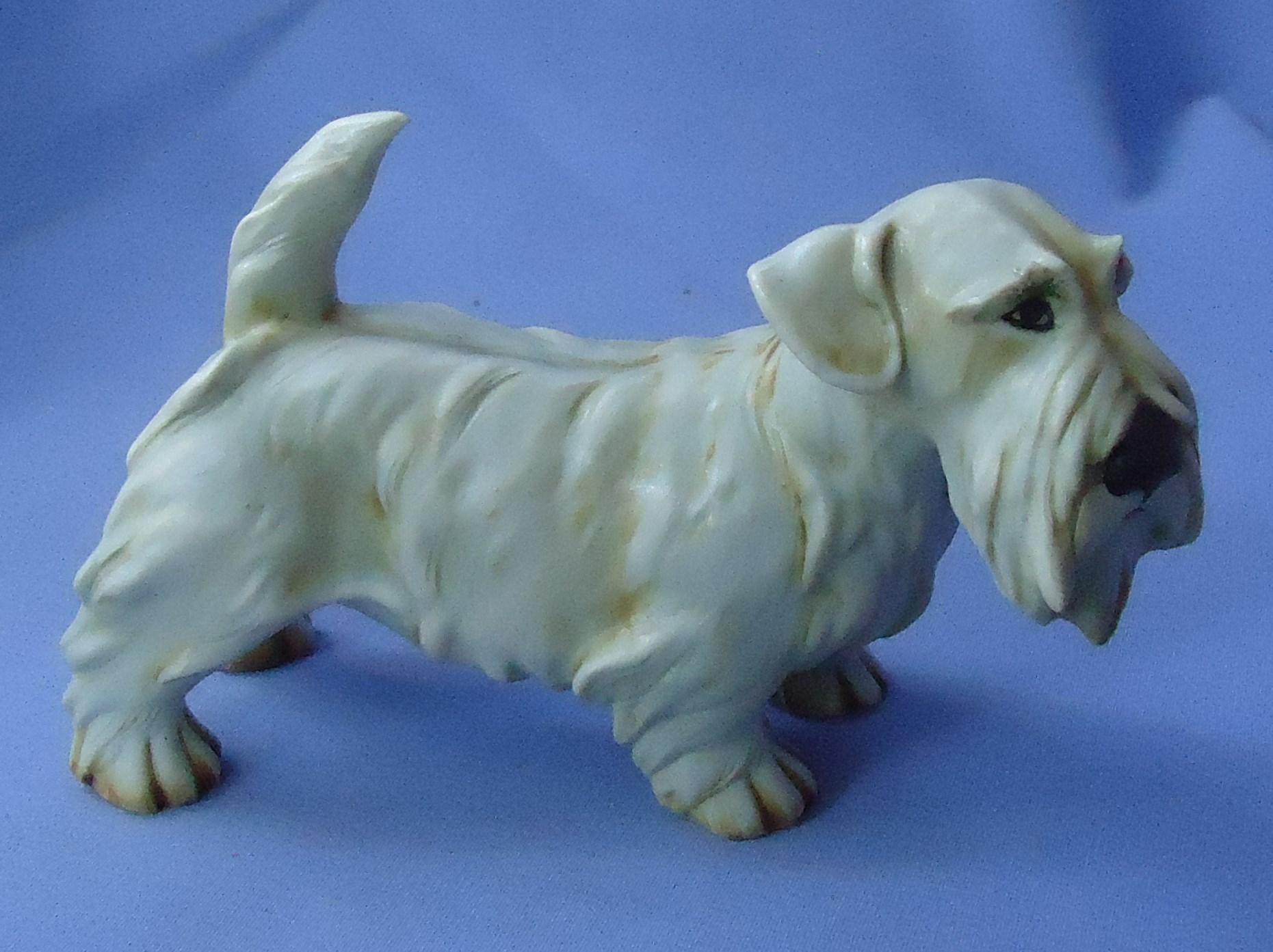 "1950s Sealyham Cesky terrier dog Cacciapuoti Italy 6"""