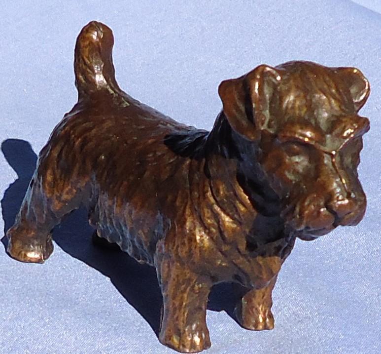 """1950s Sealyham Cesky terrier 4"""""""