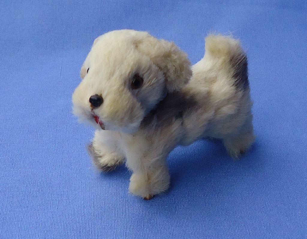 1940 Sealyham Cesky terrier Germany 4 French fashion doll