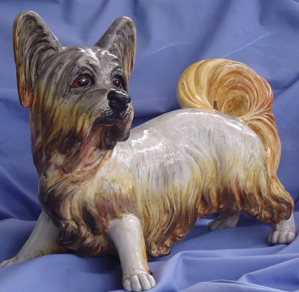 "Skye Silky Yorkshire terrier Italy 18"""