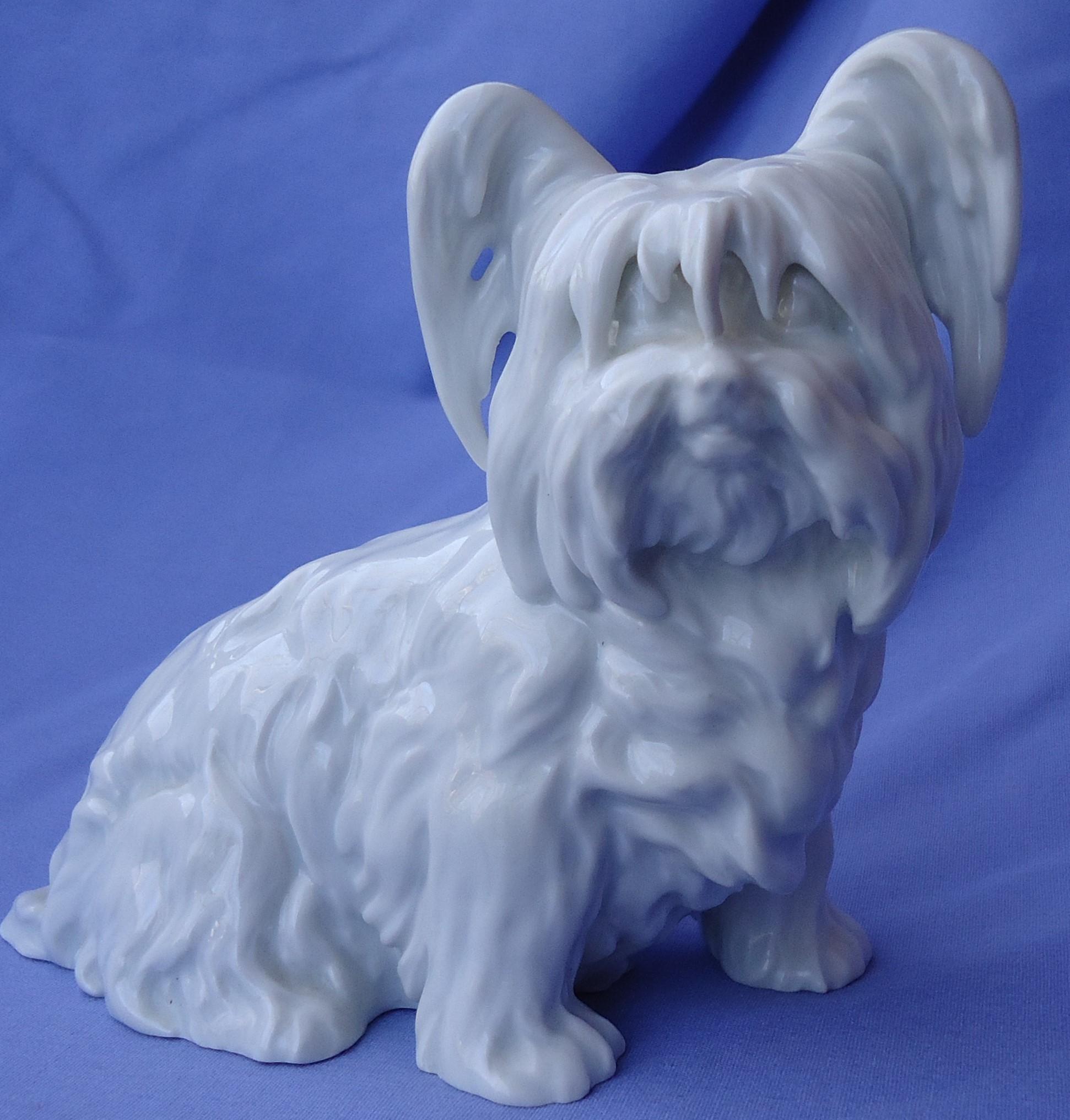 """Skye Silky Yorkshire terrier Briard dog Wien Austria Augarten  7"""""""