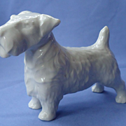 1950s Sealyham  Cesky terrier Germany 6""