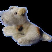 """Fripon Fox terrier  dog French fashion doll Germany 5"""" Steiff?"""