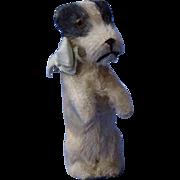 """antique Fripon Fox terrier sitting salon dog French fashion doll Germany 3"""""""