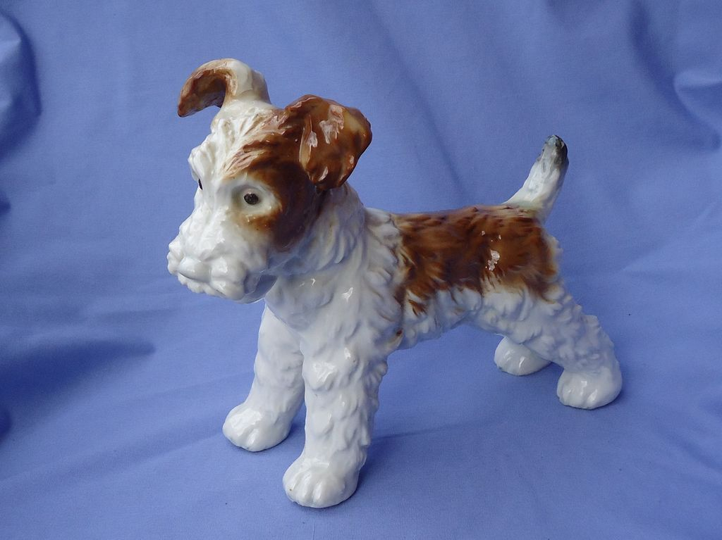 1940s Fox terrier Jack  Russell Germany 8""