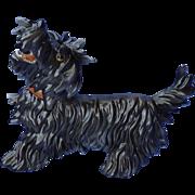 "1950 Skye Silky Maltese terrier dog Germany 9"""
