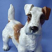 "1950s Sealyham Cesky terrier Zaccagnini Italy 8"""