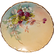 Hand Painted T & V Limoges Plate with Blueberries