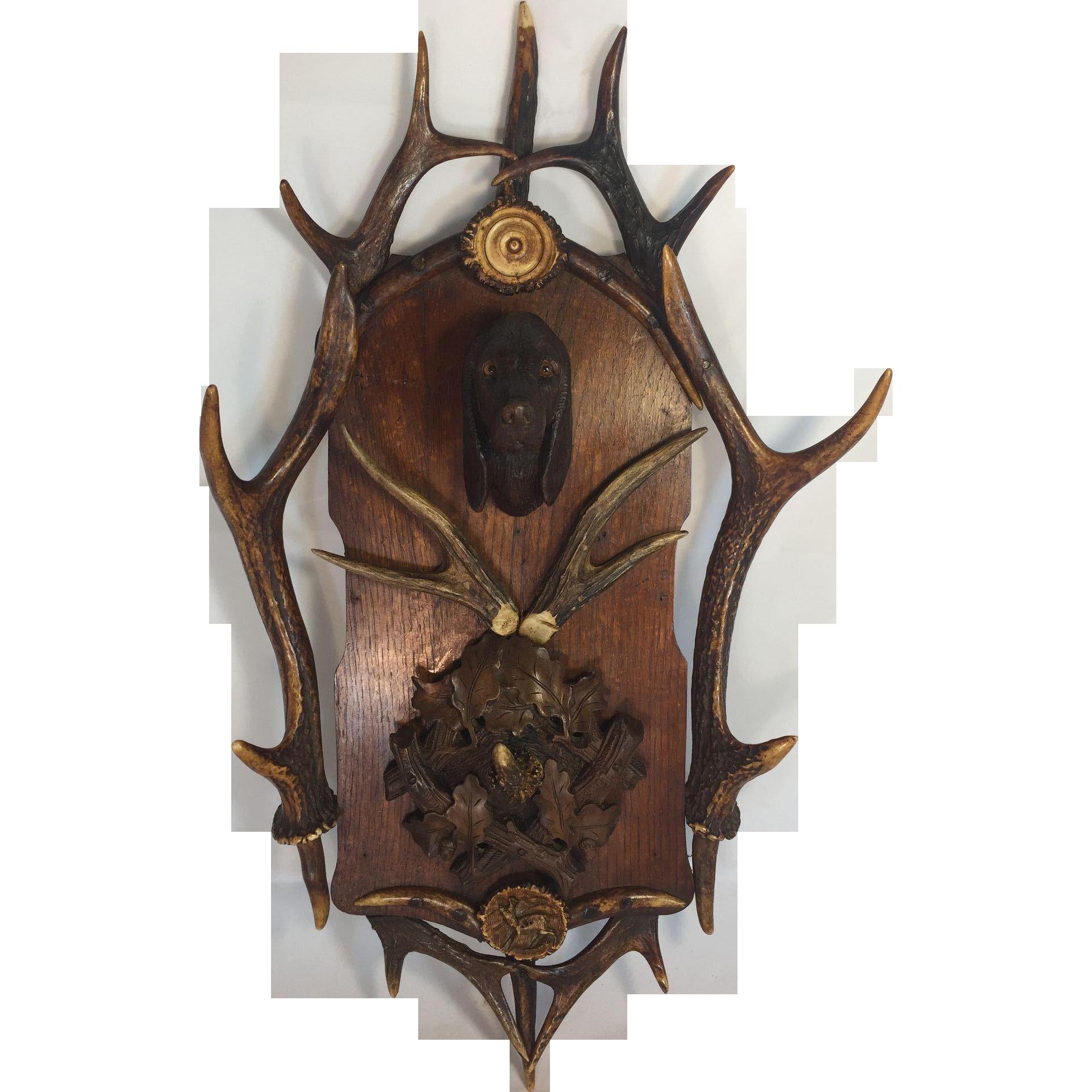 Black Forest Antler and Carved Dog Head Plaque Hook