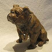 Painted Metal Bull Dog Bank