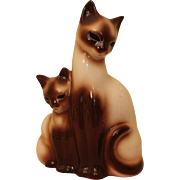 Siamese cats by Kron