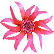 Spectacular Large Flower Power Dimensional Hot Pink Spider Mum Pin Brooch 1960's