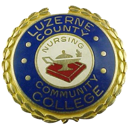 10k Solid Gold Luzerne County Community College School of Nursing Pin